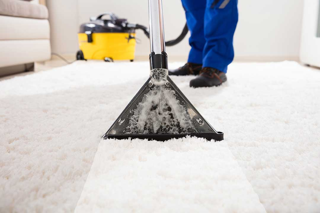 GreenChoice Carpet Cleaning