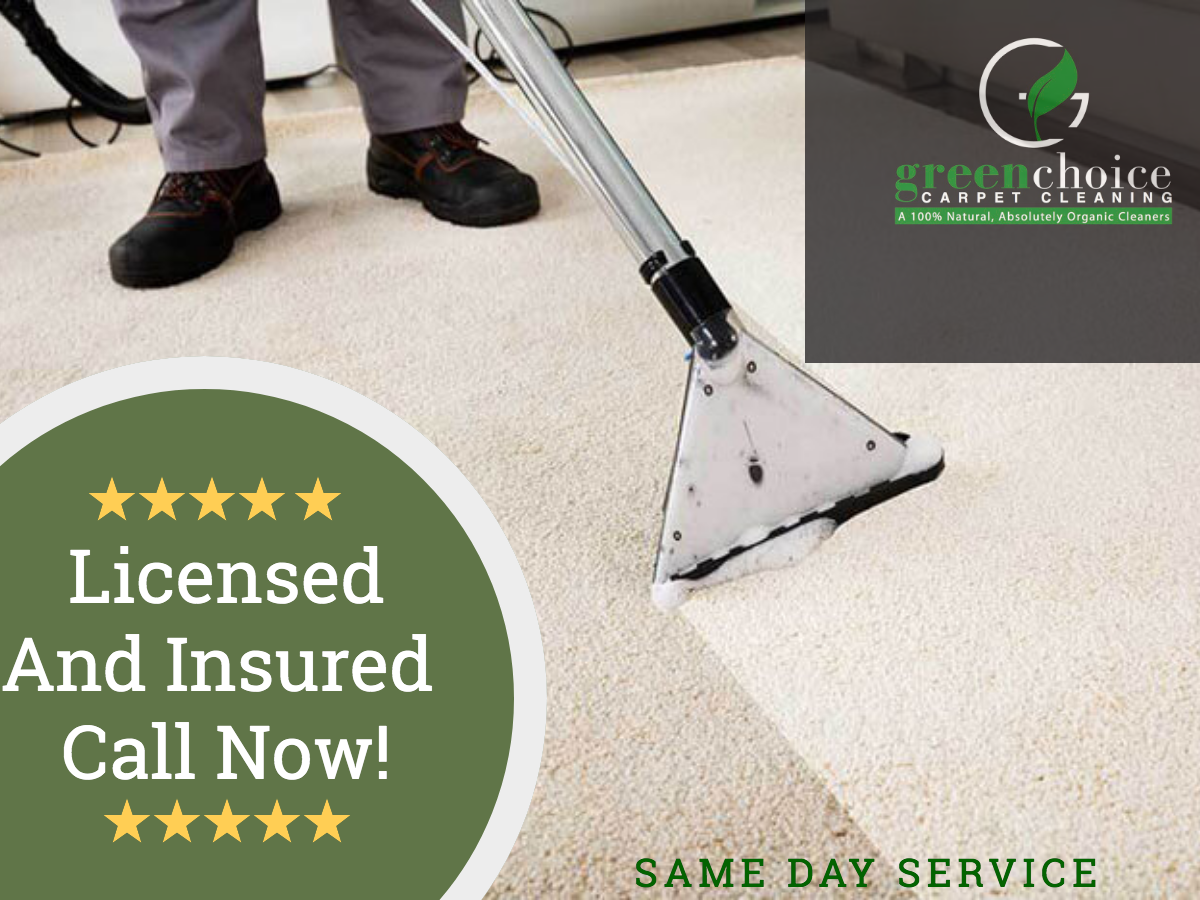 Carpet Cleaning Queens NY | 15% OFF